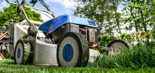 Gartengeräte & Werkzeuge